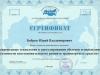 sertifikat_2004