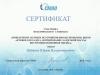 sertifikat_2010_1